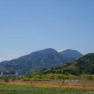 権現山~竜爪山~道白山(トレラン)