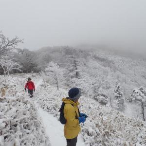 安倍東山稜、雪の十枚山(パトロール)