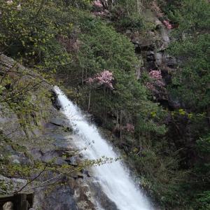 南木曽、田立の滝キャンプ 2021