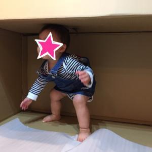 【1歳3ヶ月】成長に驚き!