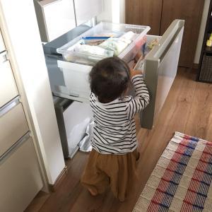【1歳6ヶ月】成長録!