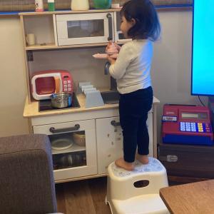 【2歳】【10ヶ月】踏み台をどこにでも連れて行く