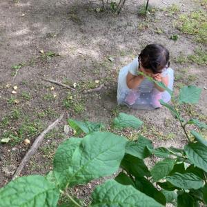 2歳と0歳とキャンプに行く為に新調したもの