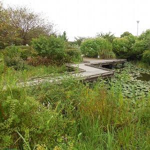 見明川公園とこちらこそ・・・
