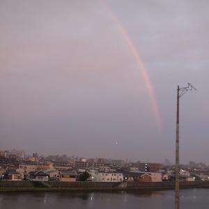 早朝の虹・・・・