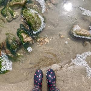 海と山の幸を採集!英国で密かなブームのフォレジングとは【海辺1泊旅行レポその2】