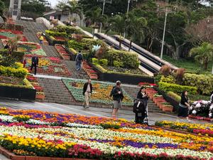 海洋博花のフェスティバル