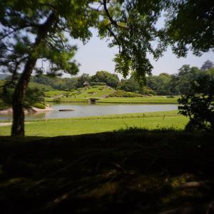 岡山後楽園を写しました! 気温34.5  暑い
