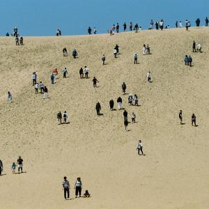 昨年の砂丘