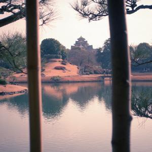 新春後楽園を写しました!