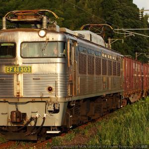 【鹿児島】エロエロ銀ガマ EF81 303