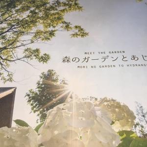 森のガーデンとあじさい(ホテル・ロッジ舞洲)