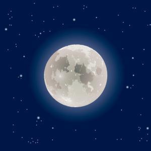今日(2019年11月12日)は満月