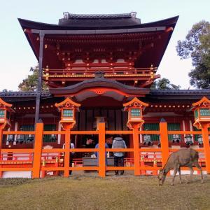 奈良の 春日大社