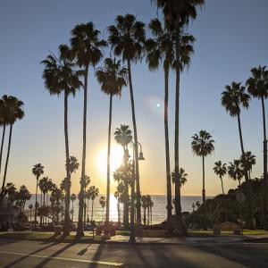Heartwarming stories in LA ~心温まる話~