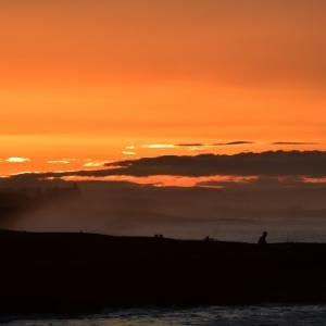 今日の日ノ出は花水川河口から。