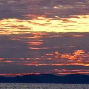 今朝の日ノ出&アオバト飛翔。