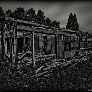 Skeleton House...