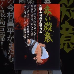 #今村昌平監督作品 #赤い殺意 #春川ますみ