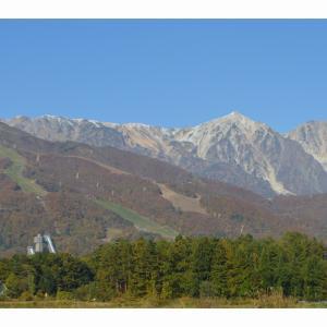 本日も秋晴れの白馬村です。