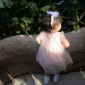 Anjel  ♪