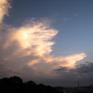 雨上がりの夕空 ♪