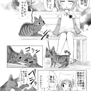 キジトラ・ケムくん 5