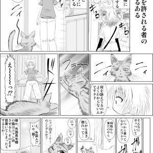 キジトラ ケムくん 7
