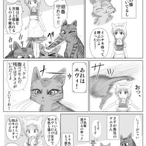 キジトラ ケムくん 8