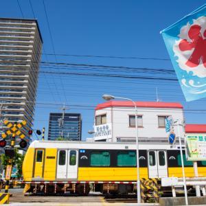 黄色い電車と氷旗
