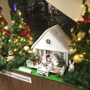 もうクリスマスのイルミネーションが出ていました(2)永山・その2