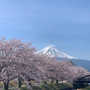 【報告】2019チャレンジウルトラ富士五湖