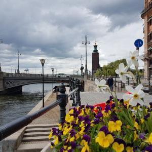 コロナ渦中の夏、 北欧ヴィンテージ雑貨のセールアップのお知らせです。