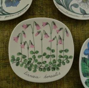 1.Arabia  Botanica ミニウォールプレート リネア