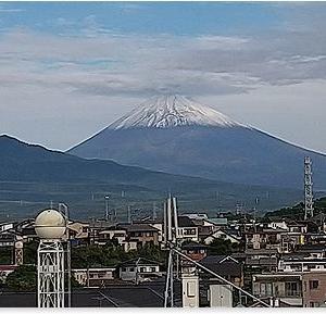 きれいな富士山が見えました。