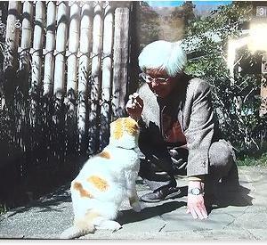 NHK番組「養老センセイとまる 鎌倉に暮らす」