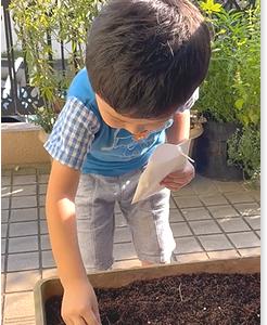 白玉ちゃん(3歳) 土に触れる