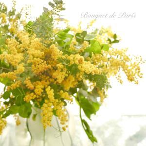 Bouquet de Paris (o^^o)