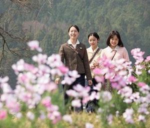 2019年日本映画ベスト10
