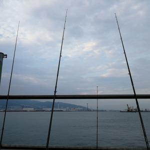 神戸でアナゴ釣り