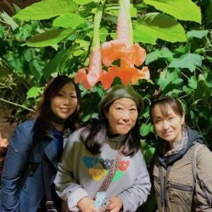 日本の植物、芸術、文化を紹介するイベントJapan After Hoursに行ってきた