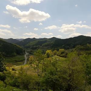 朝風峠から稲渕へ