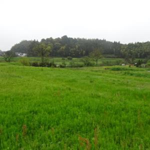 飛鳥京跡苑池遺跡