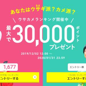 ハピタス☆「あなたはウサギ派?カメ派?最大で30,000ポイントプレゼントキャンペーン」絶賛開催中~ヾ(≧▽≦)ノ