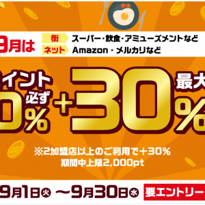 d払い☆明日が最終日!「d払いお買物ラリー dポイント必ず+10%~最大30%還元」9月はスーパー・飲食・ネット利用が対象~ヾ(≧▽≦)ノ