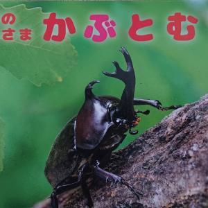 カブトムシくんの大脱走劇!