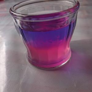 朝顔の色水で実験