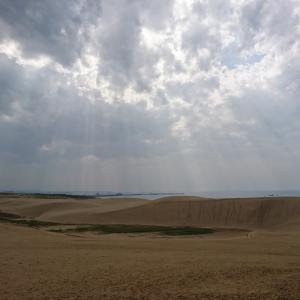 コナンくんと砂丘と蝕と本日の作業。話