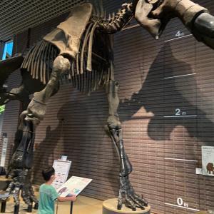 パークミュージアム茨城県自然博物館