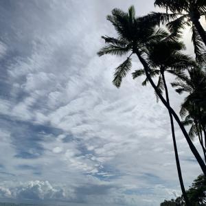 カハラビーチにてリラックス(๑・̑◡・̑๑)